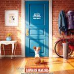 Тайная жизнь домашних животных (2016) смотреть онлайн бесплатно в хорошем качестве