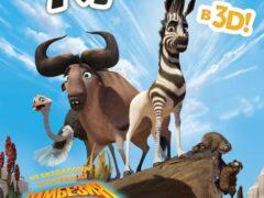 Кумба / Король сафари смотреть онлайн бесплатно в хорошем качестве