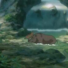 Миёри и волшебный лес